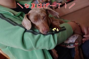 20110511_766987[1].jpg