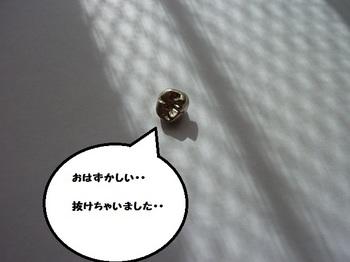 P1060860.JPG